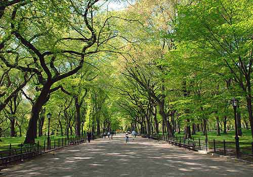 Poet's Walk, Central Park, New York City, USA